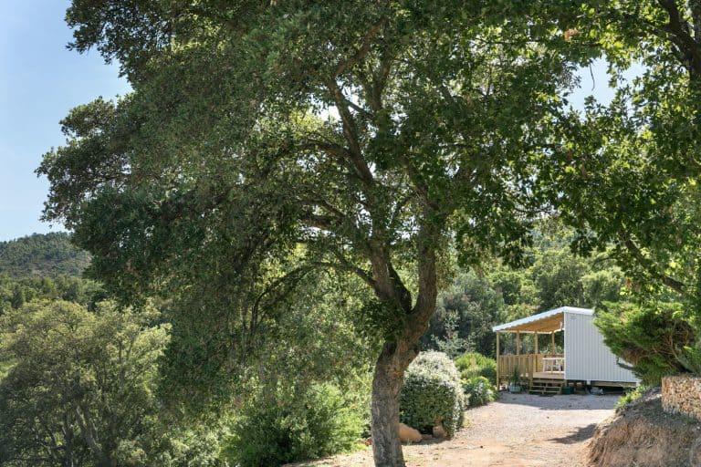 Camping Domaine de la Bergerie in Roquebrune sur Argens chalet huren Provence 768x512