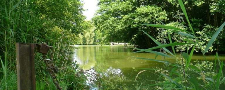 Camping Municipal du Lac aan een meer 768x307