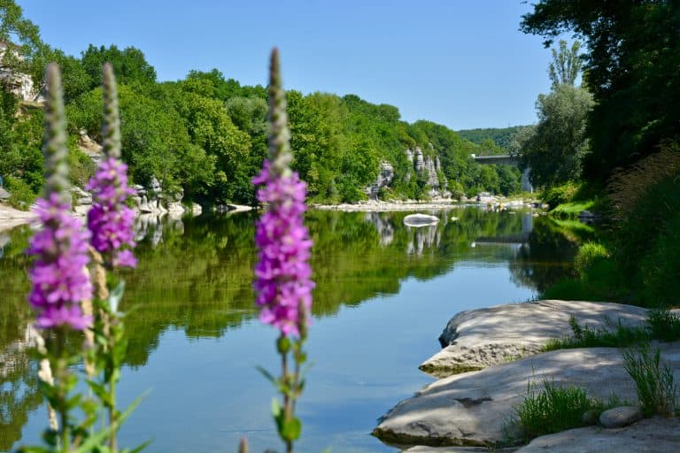 Camping Les Peupliers Ardeche  768x512