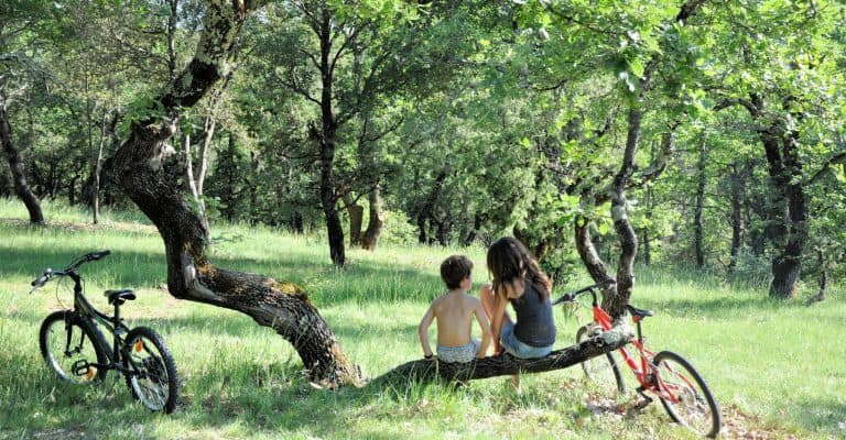 Camping Nature L Ombrage Ardeche in een bos 768x400