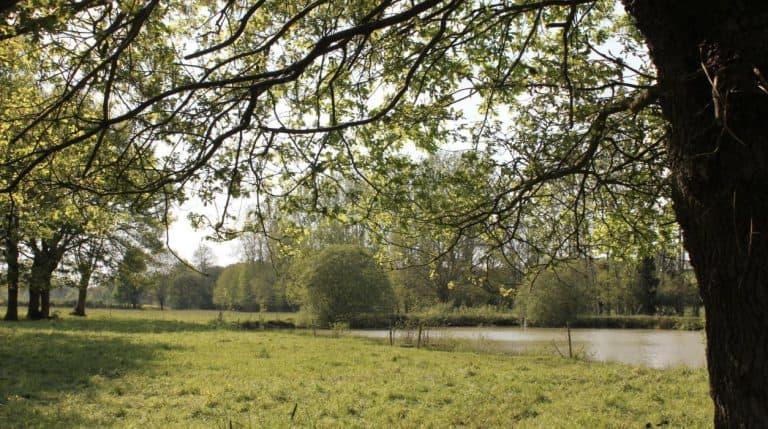 Boerencamping L Etable des Mauges en Anjou meertje 768x429